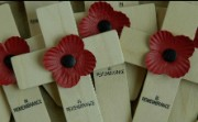 Photograph of remembrance crosses